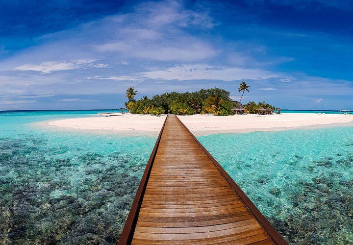OKCNL_BG_tropics